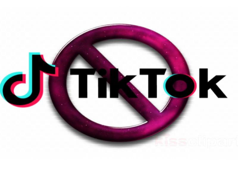 L'India vieta TikTok: le ragioni del gesto