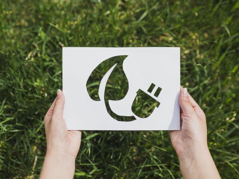 Chi e cosa sono i Green influencer?