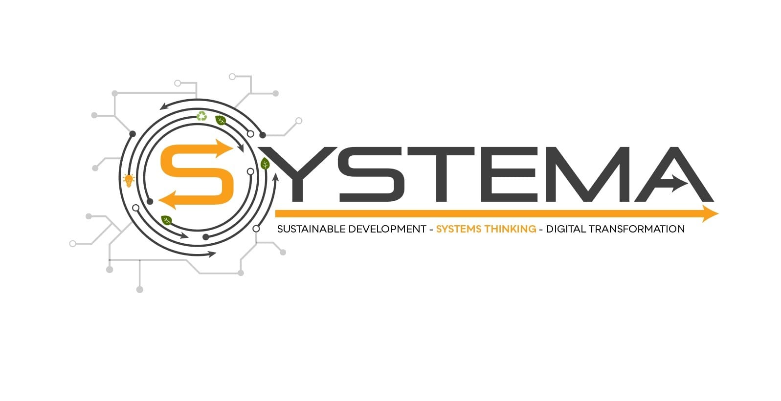 DEL partner del progetto SYSTEMA